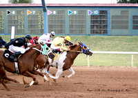 Race 4 Speedhorse Paint & Appaloosa Futurity Trials. 350 yards. July 19, 2013