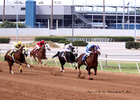 Race 2 Claiming. 250 yards. July 14, 2013