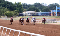 Race 1 Maiden. 300 yards. July 14, 2013