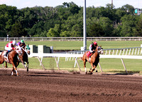 Remington Park - (MX) Futurity Trials - 350 yards- race 4 - 9740