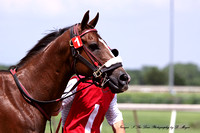 Remington Park - June 6, 2014